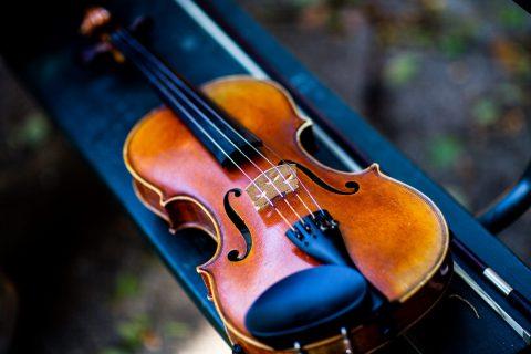 close-up-photo-of-violin-3120109
